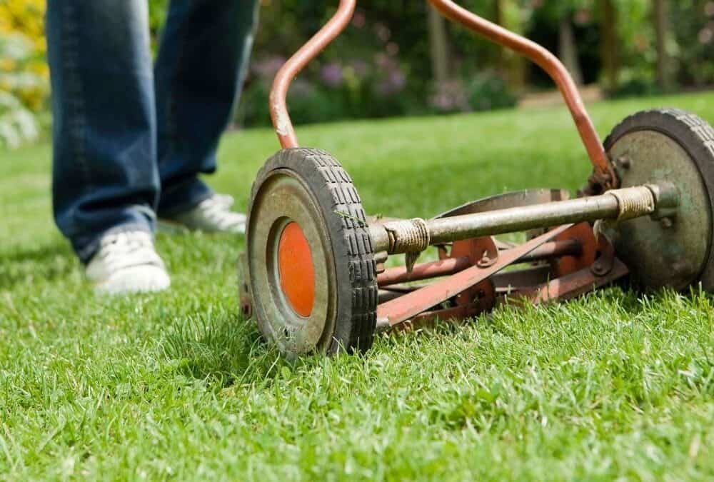 How To Cut Tall Grass With A Reel Mower Easily